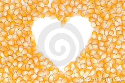 Heart shaped corn seeds