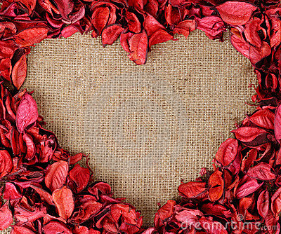 Heart shaped frame made from red petals