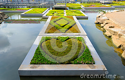 Heart shaped garden floating on the water