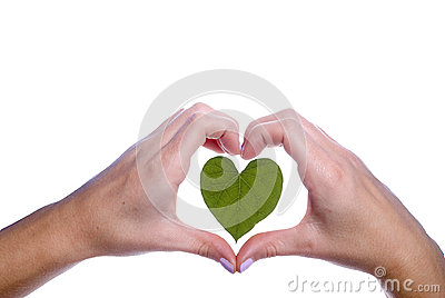 Heart Shaped Leaf Outlined by Girls Hands