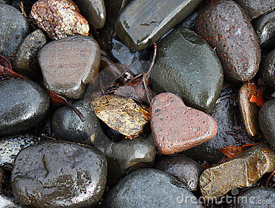 Heart Shaped Rock In Wet Rocks
