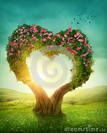 Free Heart Shaped Tree Stock Photos - 41744953