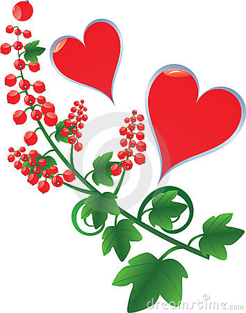 hearts with red currant