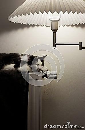 Heating lighting home
