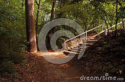 Heavenly Stairway