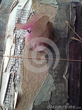 Heavily-damaged vintage book with bougainvillea