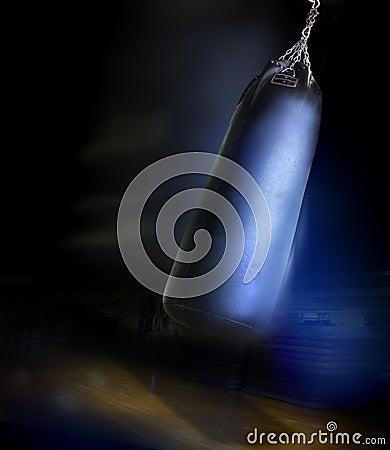 Heavy gym boxing bag