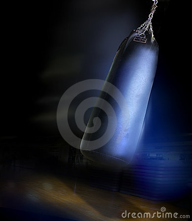 Free Heavy Gym Boxing Bag Stock Image - 8653501