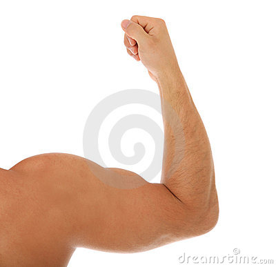 Heavy muscled male arm