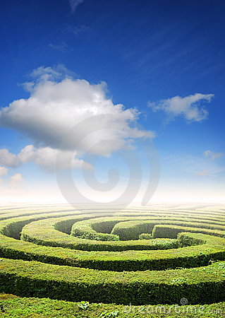 Free Hedge Maze Problem Solving Royalty Free Stock Photography - 5383747