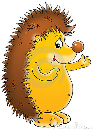 Hedgehog Stock Photography Image 1644542