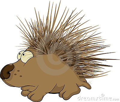 Hedgehog. Cartoon