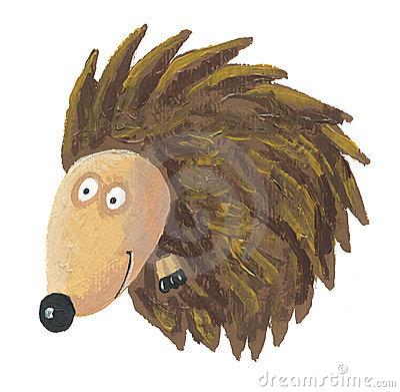 Hedgehog curled up