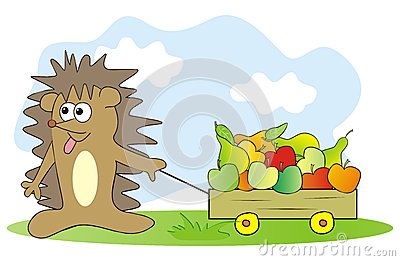 Hedgehog and fruit