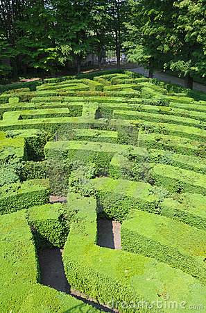 Hedges labyrinth