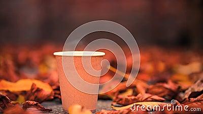 Heißer Kaffee in Papiertasse verdampfen stock video