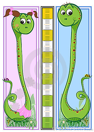 Height children s scale - Snakes