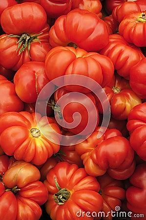 Heirloom Organic Tomatoes