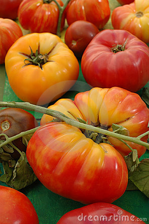 Free Heirloom Tomatoes Royalty Free Stock Photos - 224458