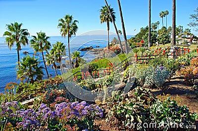 Heisler Park landscaped gardens, Laguna Beach, California.
