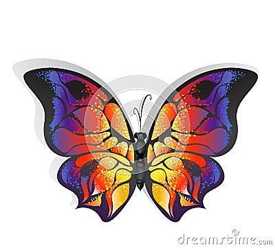 Heldere vlinder