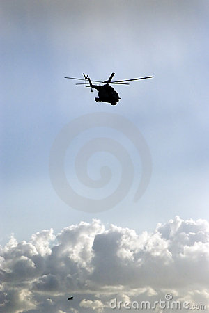Free Helicopter And Bird Royalty Free Stock Image - 3042706