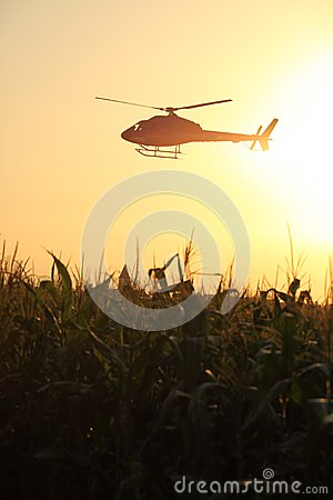 Helicopter at the sunset