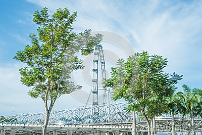 The Helix Bridge and The Singapore Flyer