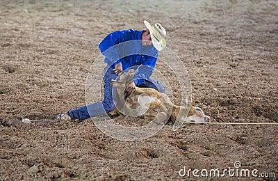 Helldorado days rodeo Editorial Stock Image