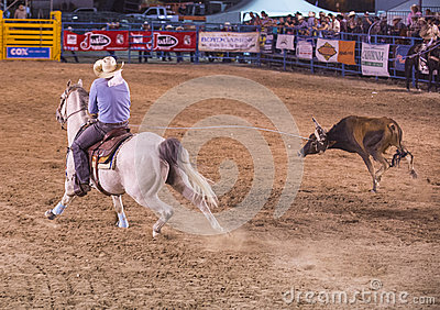 Helldorado days rodeo Editorial Image