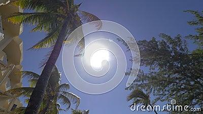 Heller Sonnenschein, der über Sommerurlaubsort in Mauritius scheint stock video