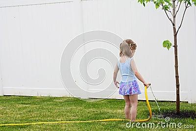 Helping a tree grow