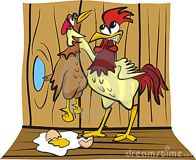 In the hen house - arguing