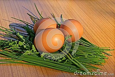 Hen s egg