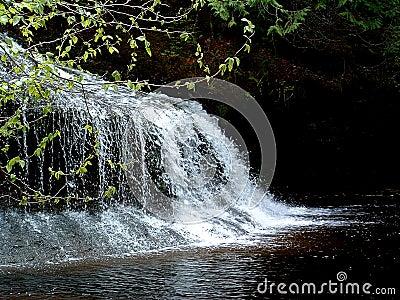 Henderson Falls 2