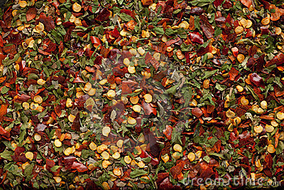 Herb and chili mix background