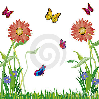 Herb flowerses and butterflies