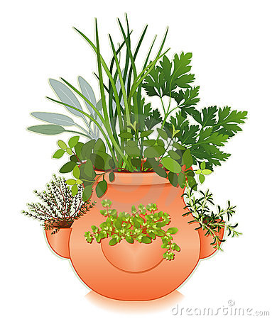 Free Herb Garden In Old Fashioned Strawberry Jar Royalty Free Stock Photos - 10016558