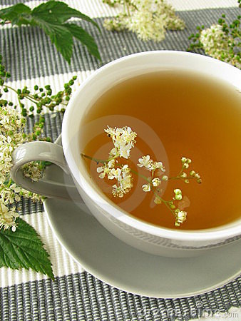 Herb tea with meadowsweet
