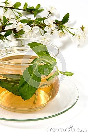 Herbaceous tea