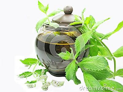 Herbal mint tea in tea-pot