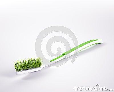 Herbal organic teeth protection