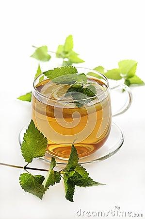 Free Herbal Tea Royalty Free Stock Photos - 14367988