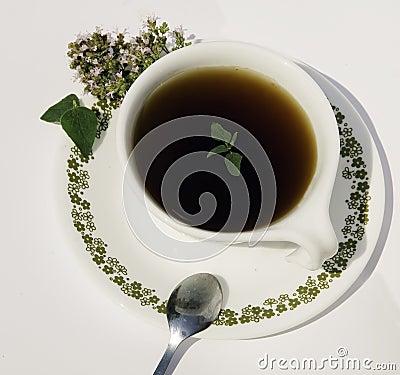 Free Herbal Tea Stock Images - 15574264