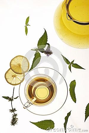 Free Herbal Tea Stock Image - 995001
