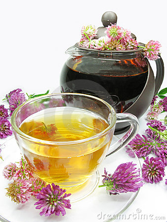 Herbal tea with clover flowers