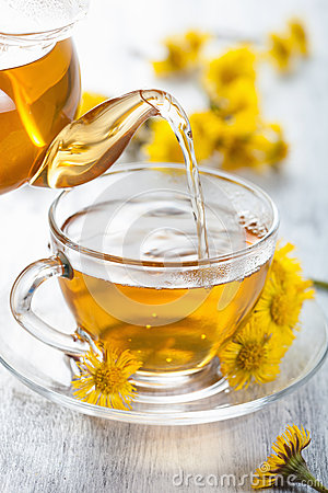 Herbal tea with coltsfoot flowers