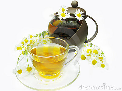 Herbal tea with daisy flowers