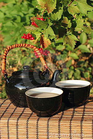 Herbal tea  in a garden