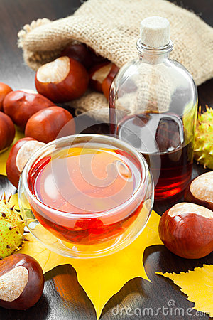 Free Herbal Tea Or Tincture Of Chestnuts And Sack With Horse Chestnut Stock Images - 45654884